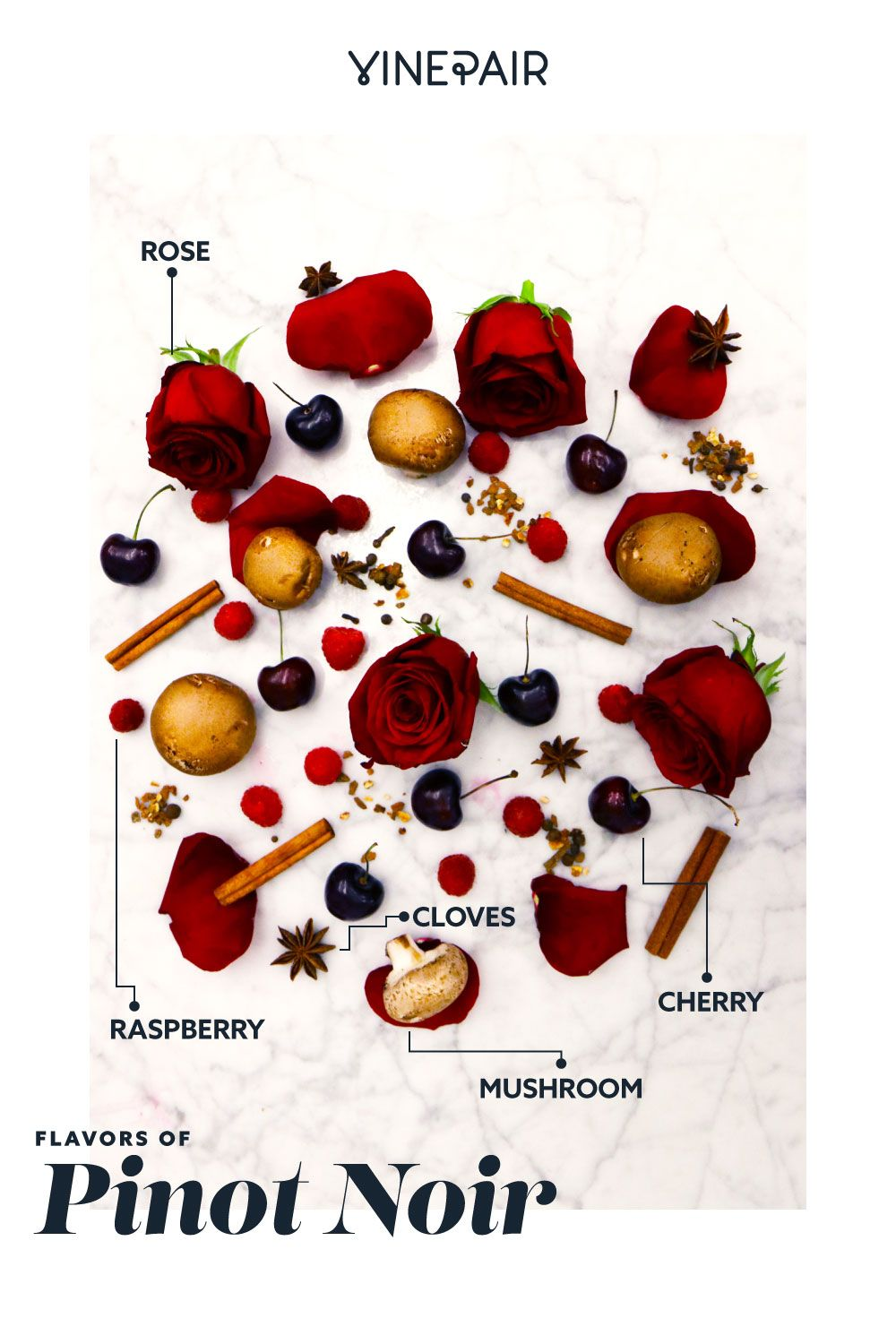 The Flavors In The 10 Most Popular Wines Visualized Infographic Vinepair Wine Flavors Wine Recipes Pinot Noir Wine
