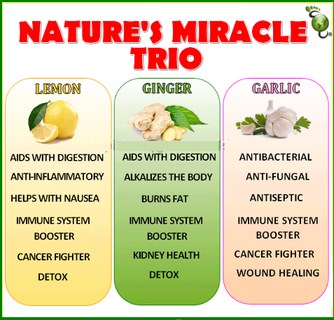 Nature's Miracle Trio