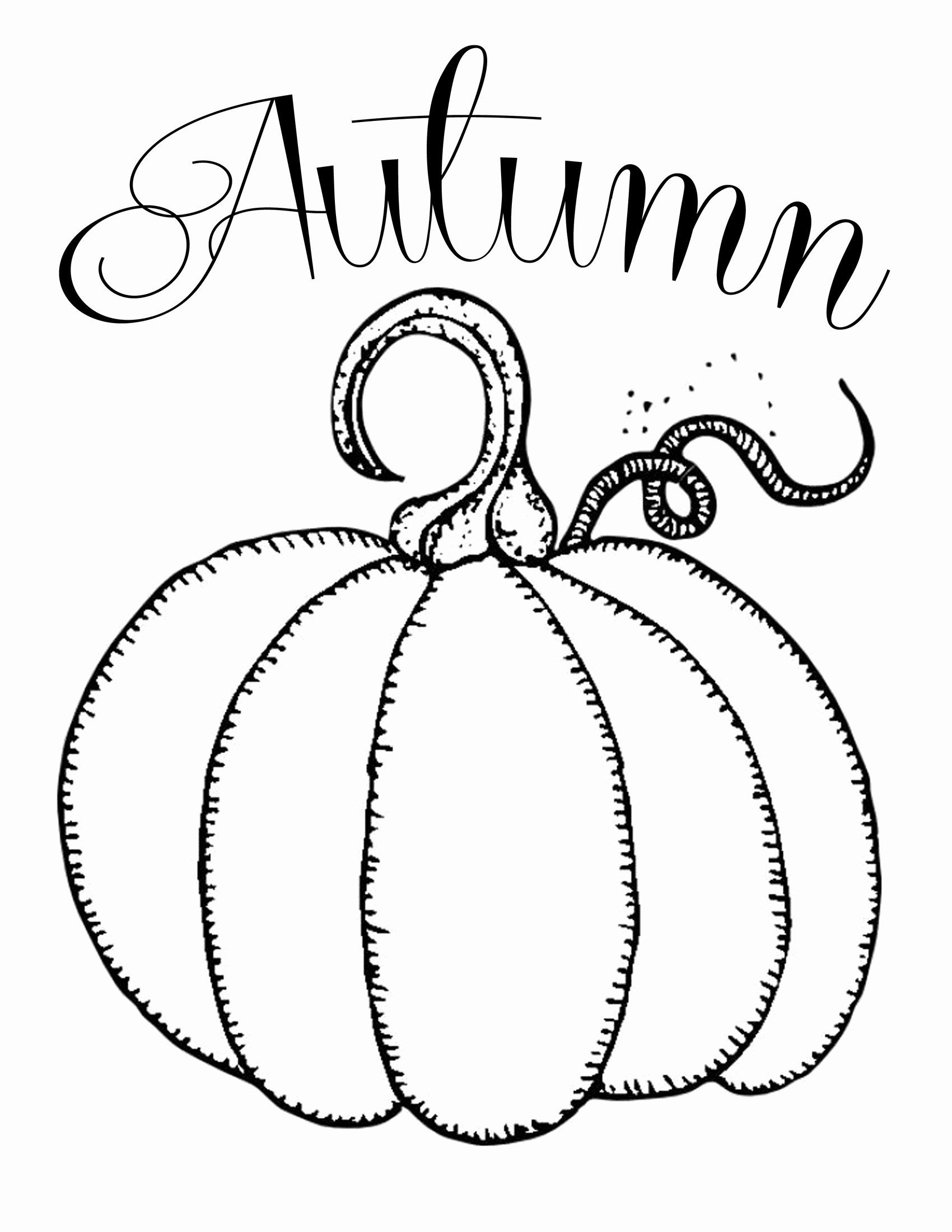 Halloween Pumpkin Coloring Sheet Lovely Coloring Pages Pumpkins Coloring Rocks Free Pumpkin Autumn In 2020 Fall Coloring Pages Pumpkin Coloring Pages Pumpkin Printable