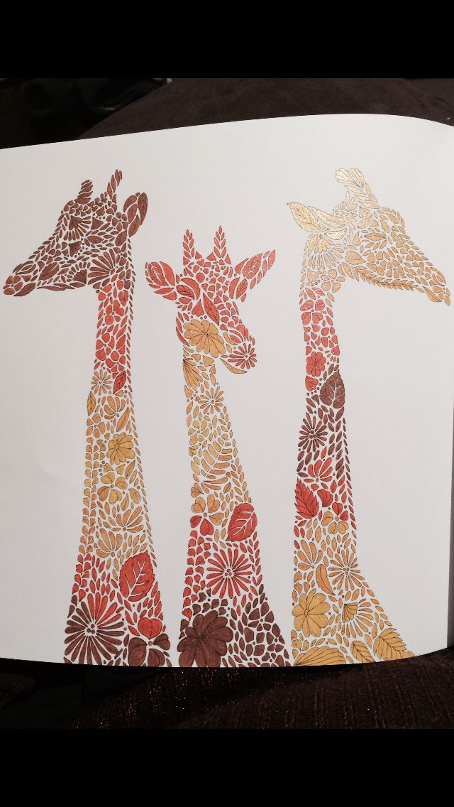 Millie Marottas Giraffes Exotic AnimalsGiraffesElephantsAnimal KingdomColouringReino AnimalGiraffeAnimalsBooks