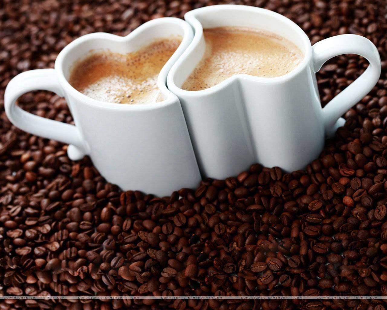 Explore Coffee Time Cupore