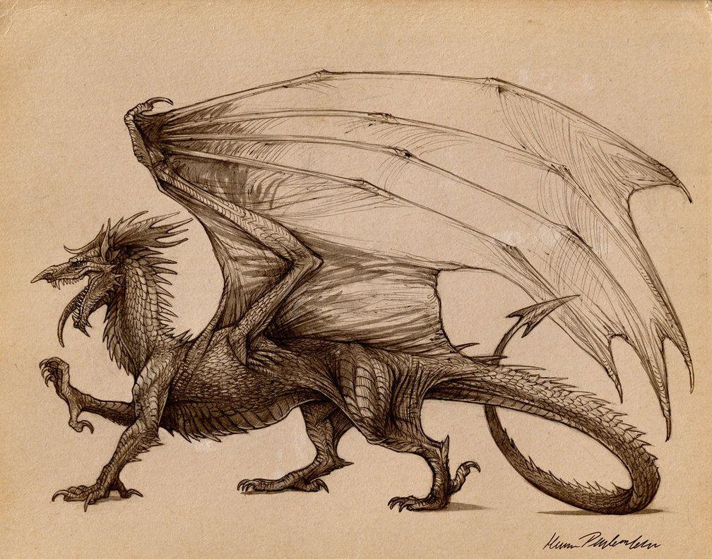 Welsh dragon tattoo designs - Deviant Art Celtic Dragon Welsh Google Search