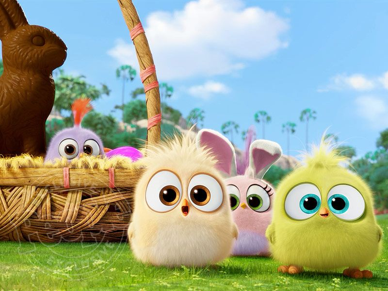 The Angry Birds Movie See The Hatchlings In Easter Themed Clip Cute Cartoon Wallpapers Cute Disney Wallpaper Cartoon