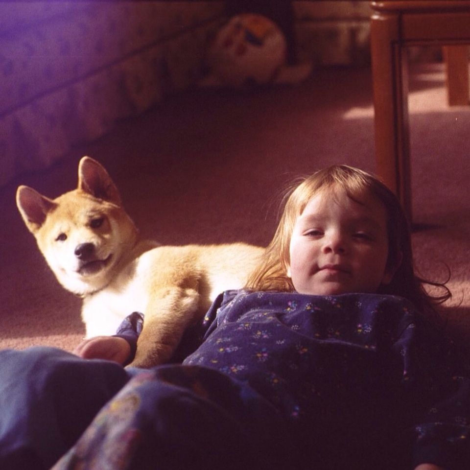 Throw back to another time.  My daughter was about 3 (now 18) and our Shiba Inu, Yoshi, was one! RIP Yoshi ❤️