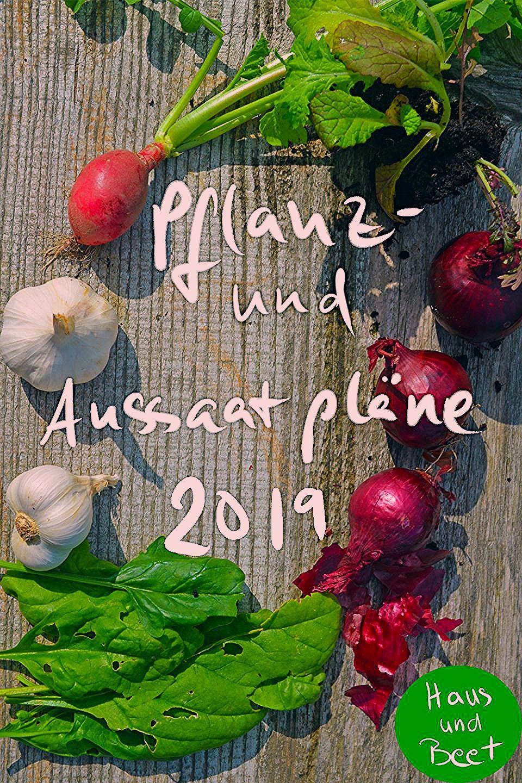 Photo of Pflanz- und Aussaatpläne 2020 mit Hilfe von Mischkultur – Haus und Beet