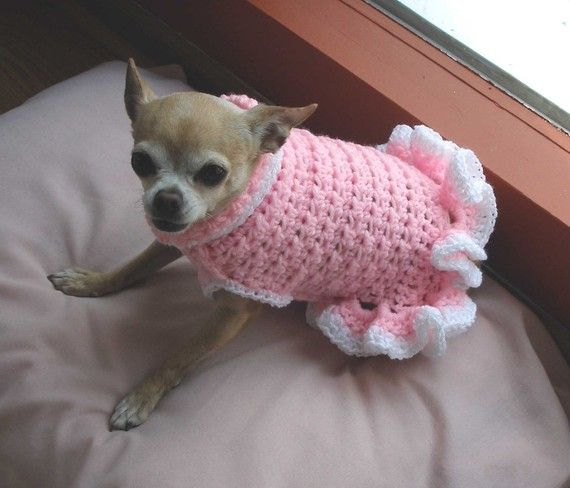 Immediate Download Pdf Crochet Pattern Cha Cha Dog Sweater Dress