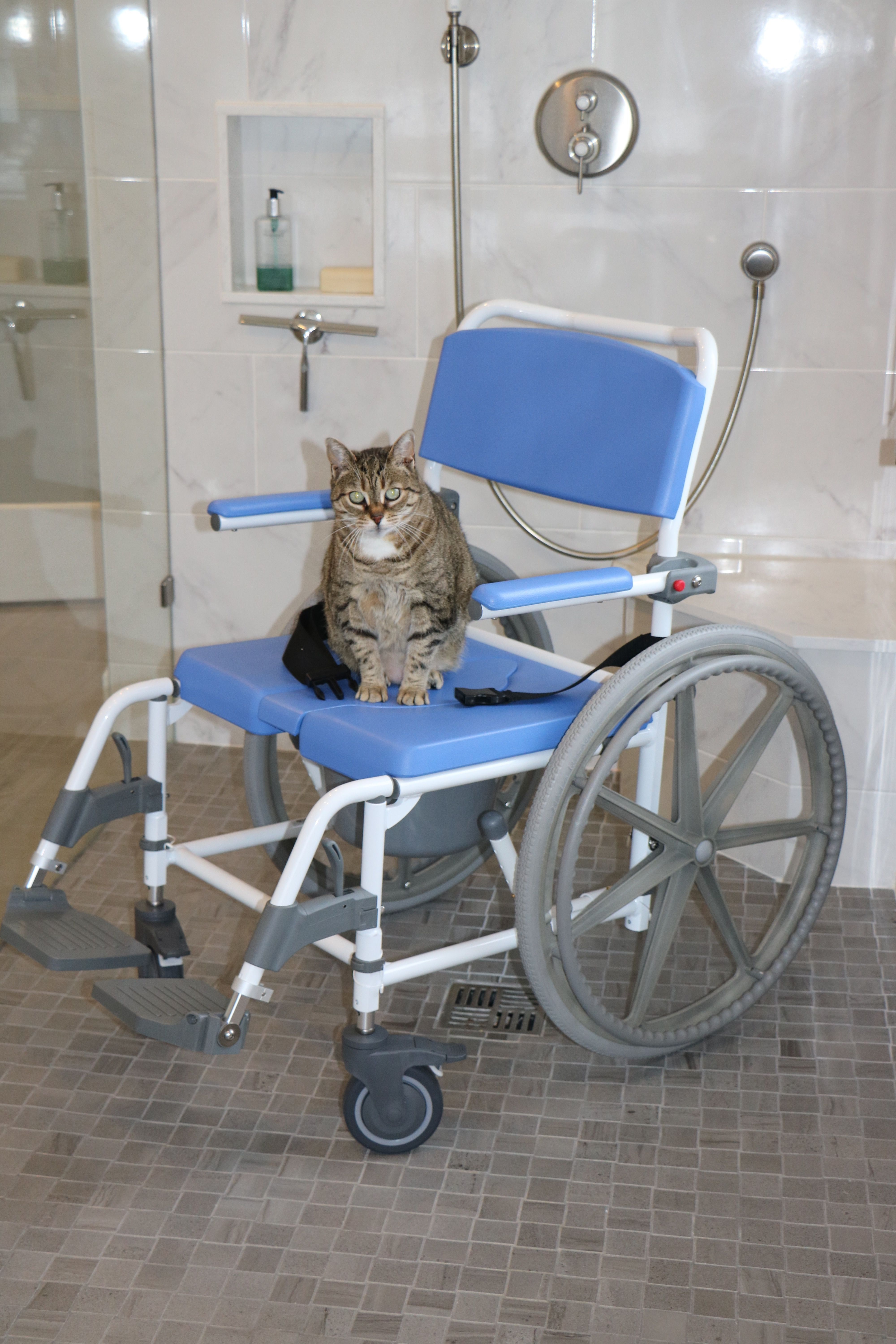 Complete your accessible shower with a roll-in shower chair from ...