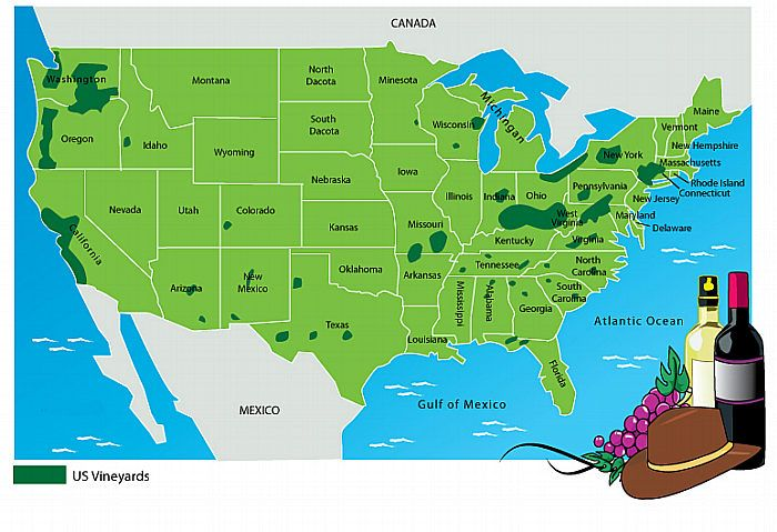 Vineyards In The United States Map Wine Regions Pinterest - Us wine regions map