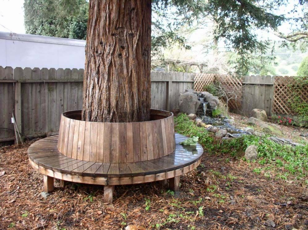 Cute bench around redwood tree Circular Tree Bench