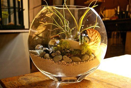 Artemisia Of Portland Gardens Pinterest Indoor Garden