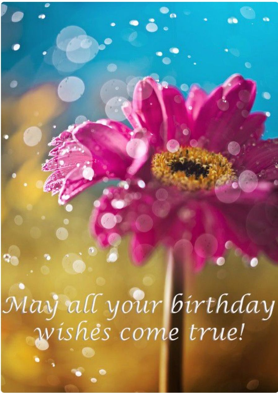 May All Your Birthday Wishes Come True Birthday Wishes Pinterest