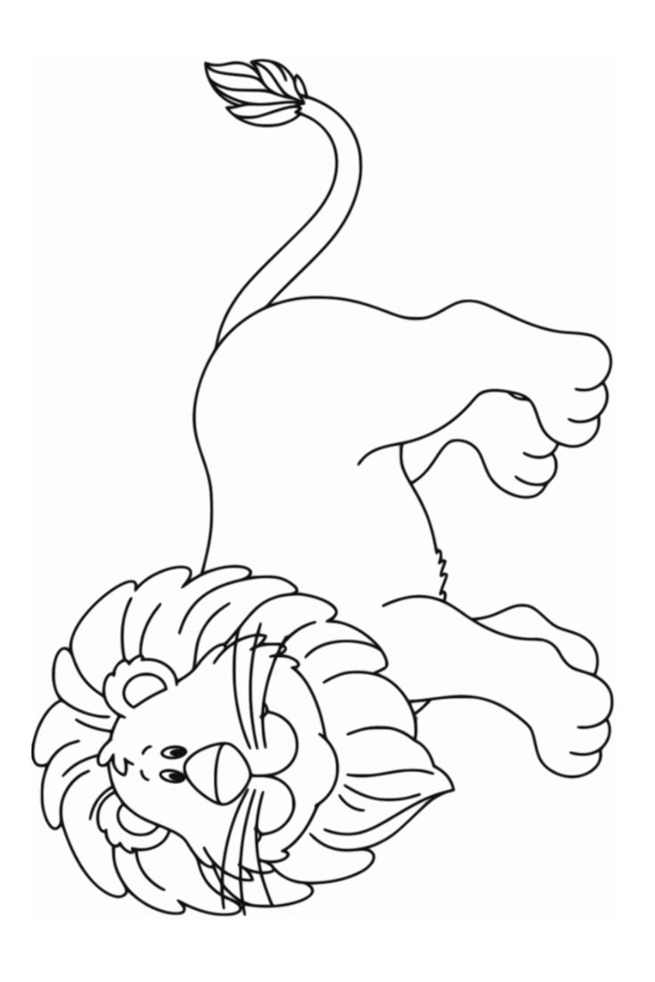- Coloring Lion Pictures Kindergarten Coloring Pages, Lion
