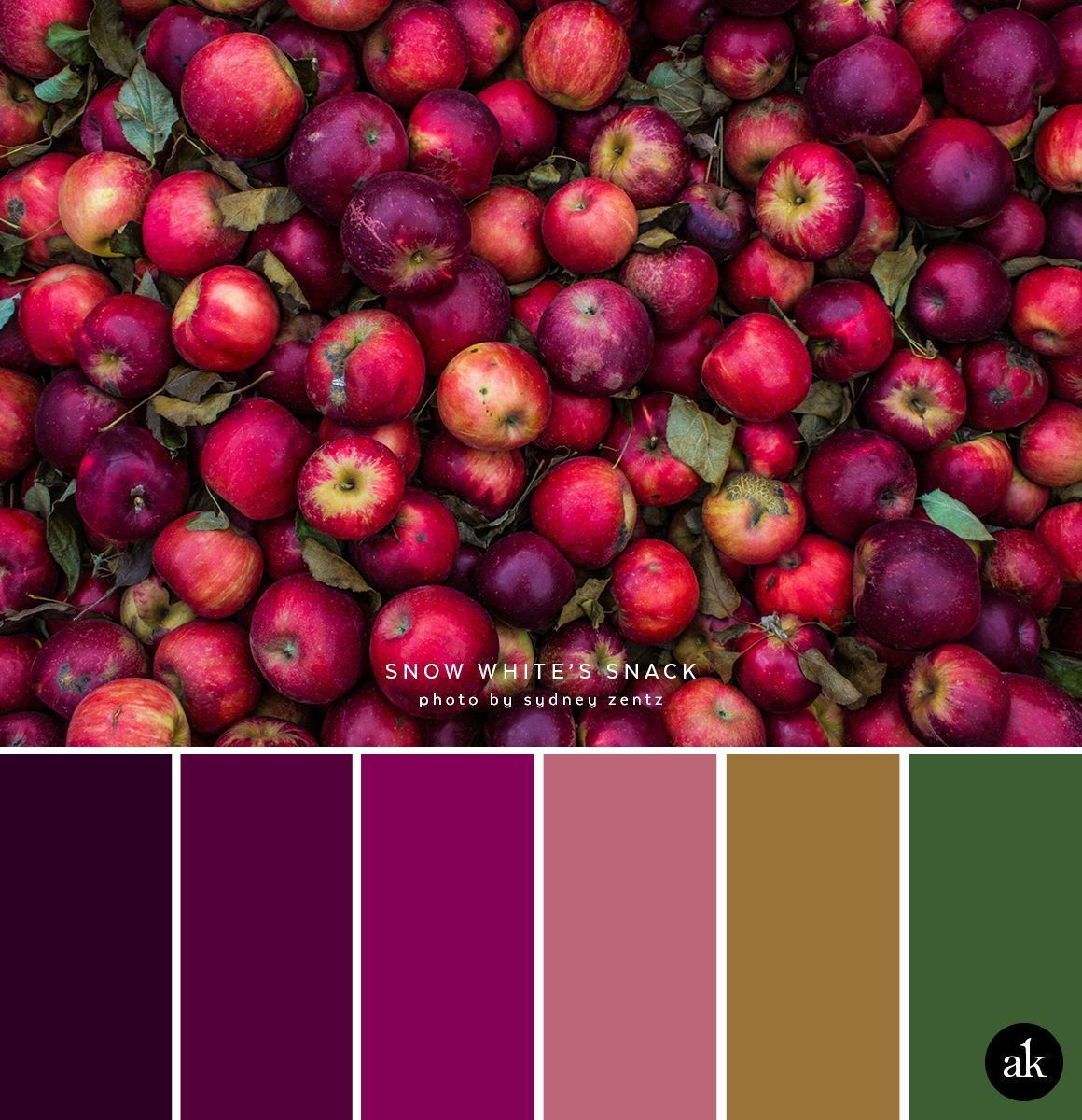 A Moody Apple Inspired Color Palette Dark Aubergine Plum Magenta Dried Rose Pink Gold Forest Green Schlaf Grüne Farbpalette Farbabstimmung Idee Farbe