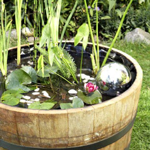 Miniteich Im Fass | ☆wohlfühl-oase☆ | Pinterest | Hüte, Garten ... Miniteich Anlegen Eine Kleine Oase Auf Dem Balkon