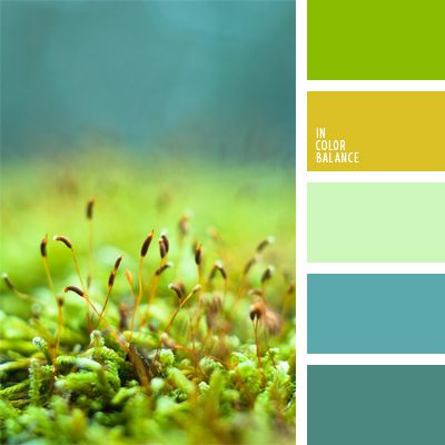 color aguamarina, color turquesa, color verde hierba, color verde