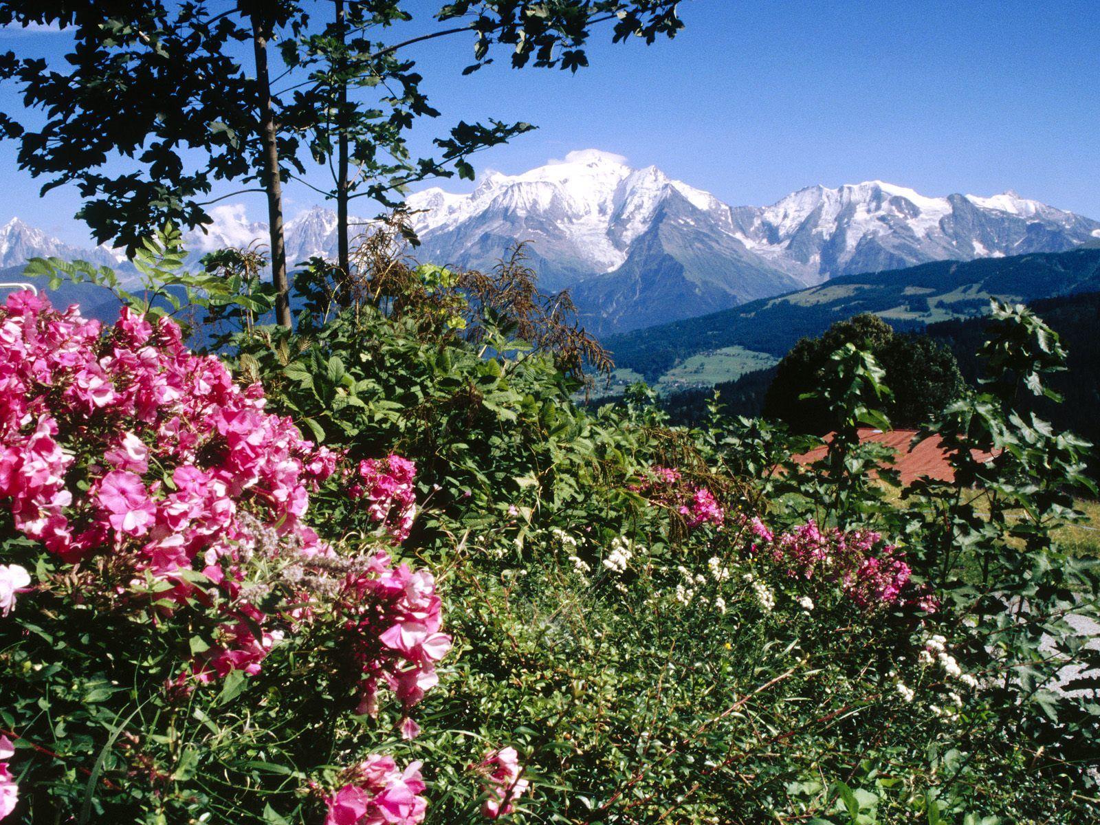 Mont Blanc View From Cordon Village Haute Savoie France Picture Mont Blanc View From Cordon Village Haute Savoie Fra Haute Savoie Beaux Endroits Pays Du Monde