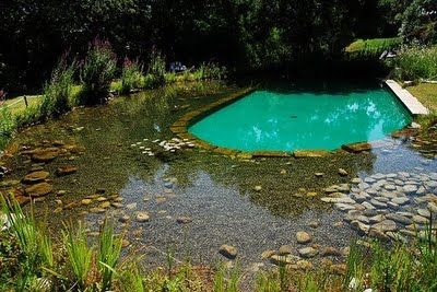 un estanque artificial estanque Pinterest Estanques