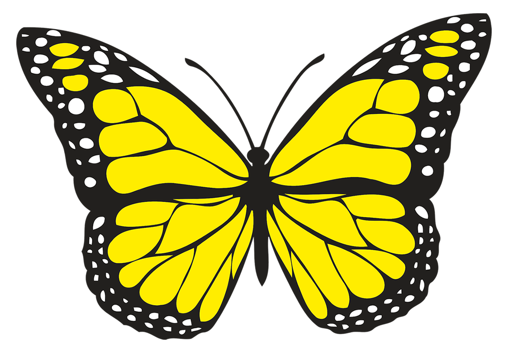 Spiritual Meaning Of Yellow Butterflies Hope And Guidance Good To