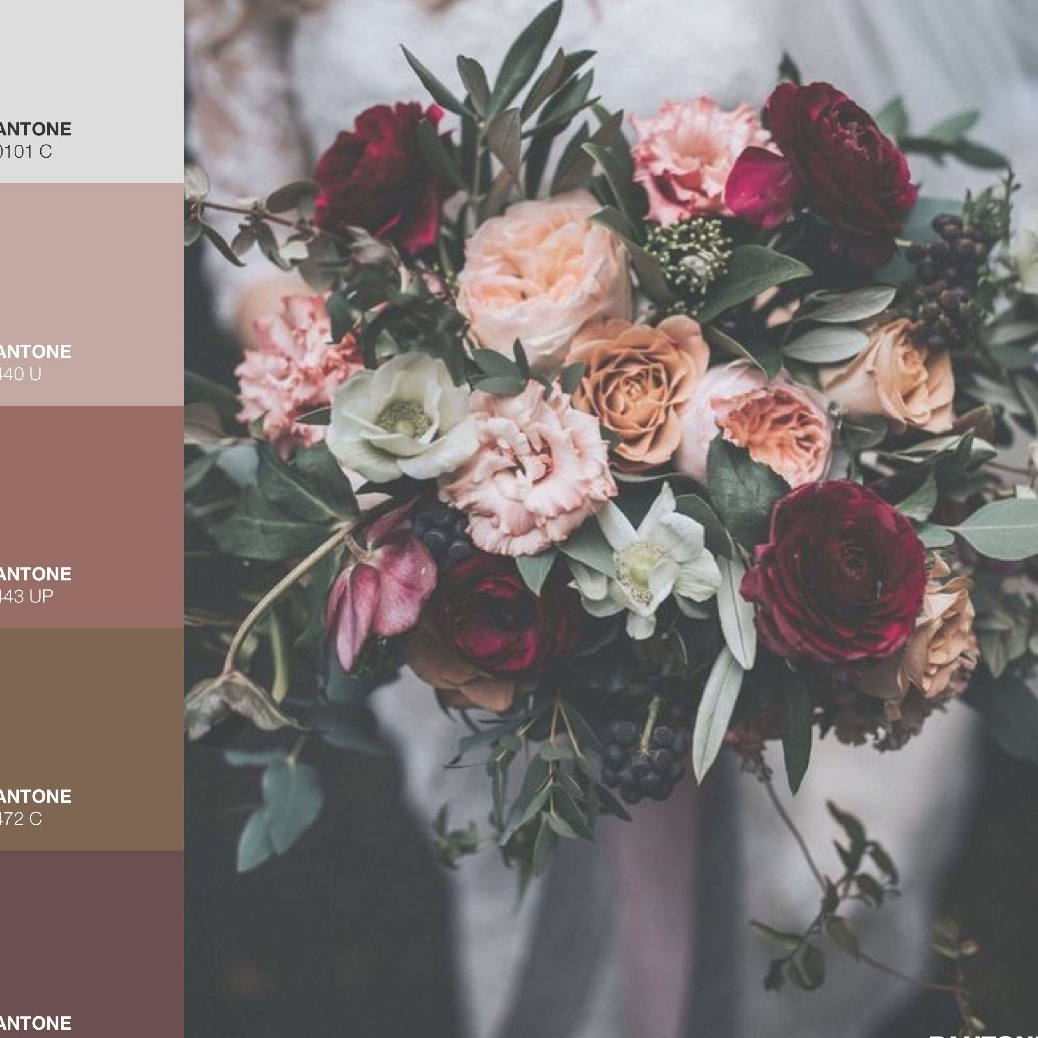 November Wedding Maroon, peach/pale pink/blush, sage v20   Pale ...