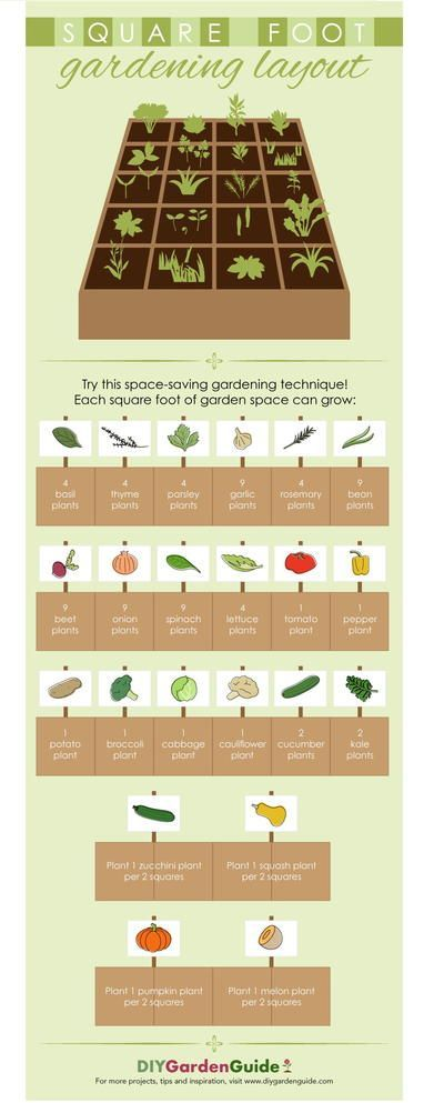 Square Foot Gardening Layout -   16 garden design Inspiration building ideas