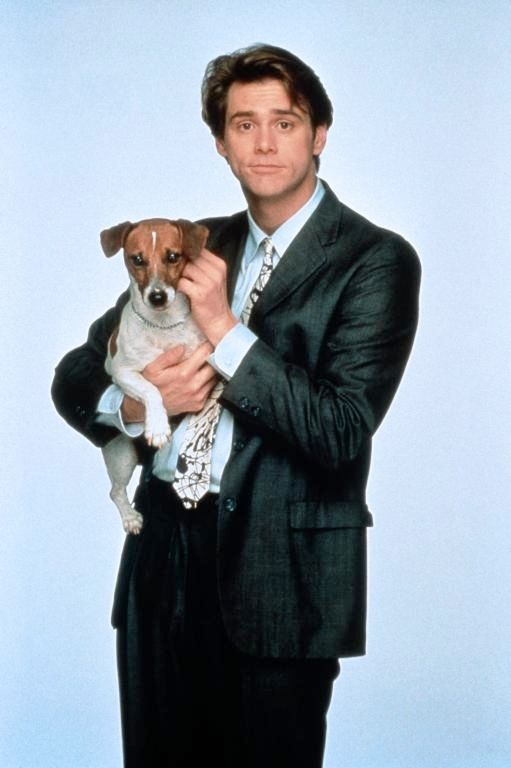 90 S Movies Jack Russell Dogs Jack Terrier Jack Russell
