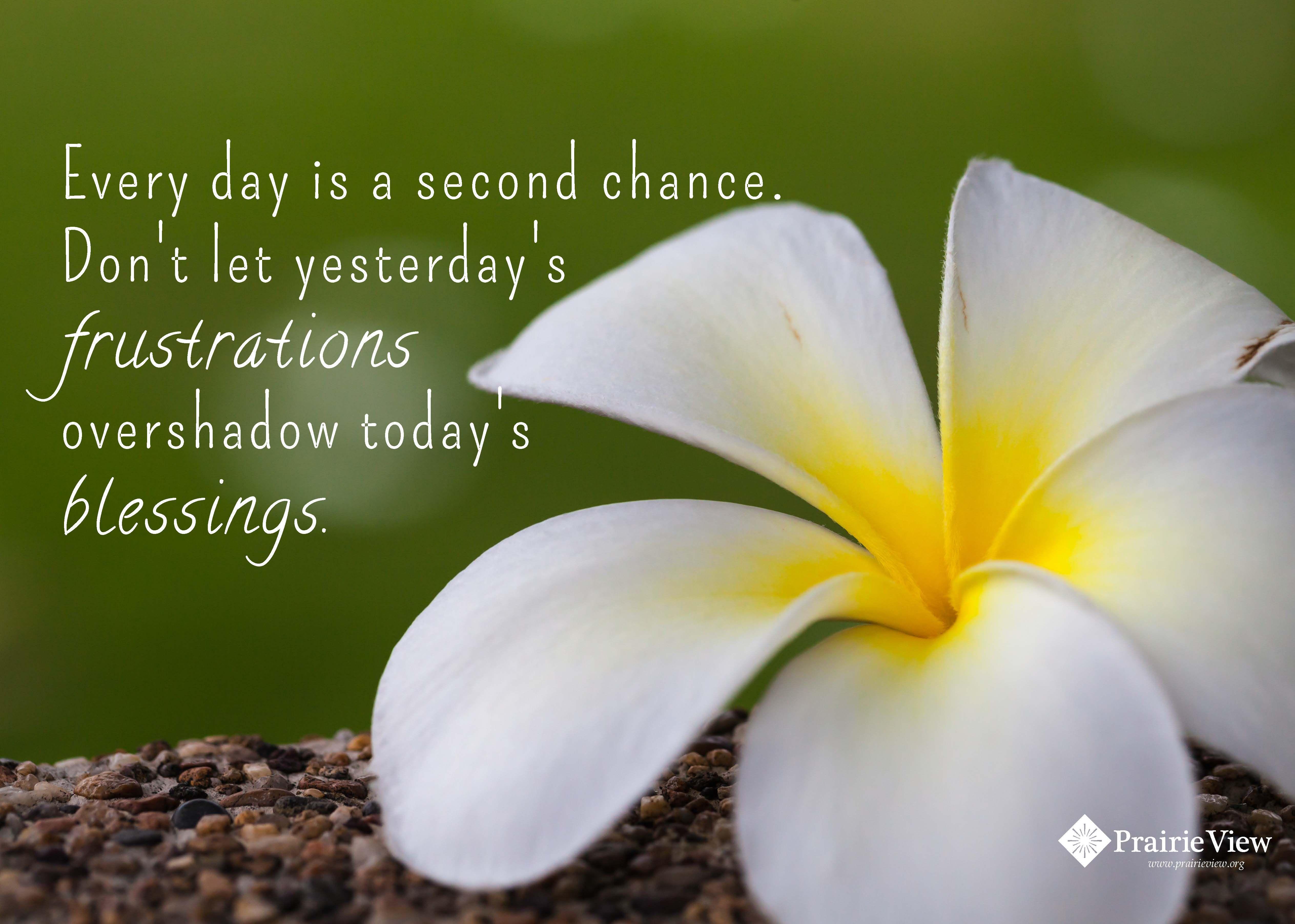 Yesterdays Chance
