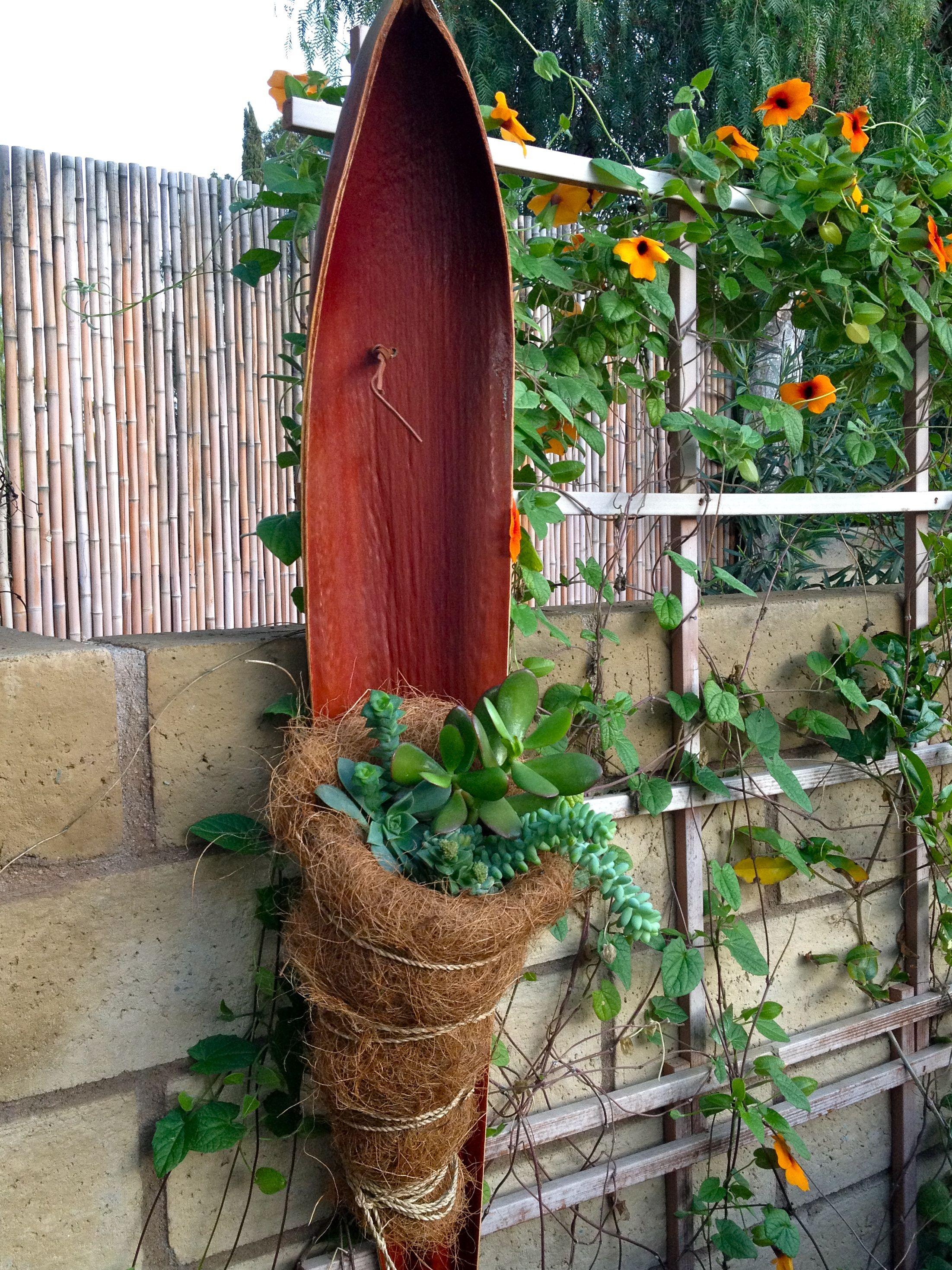 Palm tree seed pod with succulent nest | Crafty Stuff | Pinterest ...