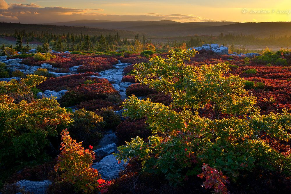 Across Dolly Sods by jonathanjessup.deviantart.com on @DeviantArt