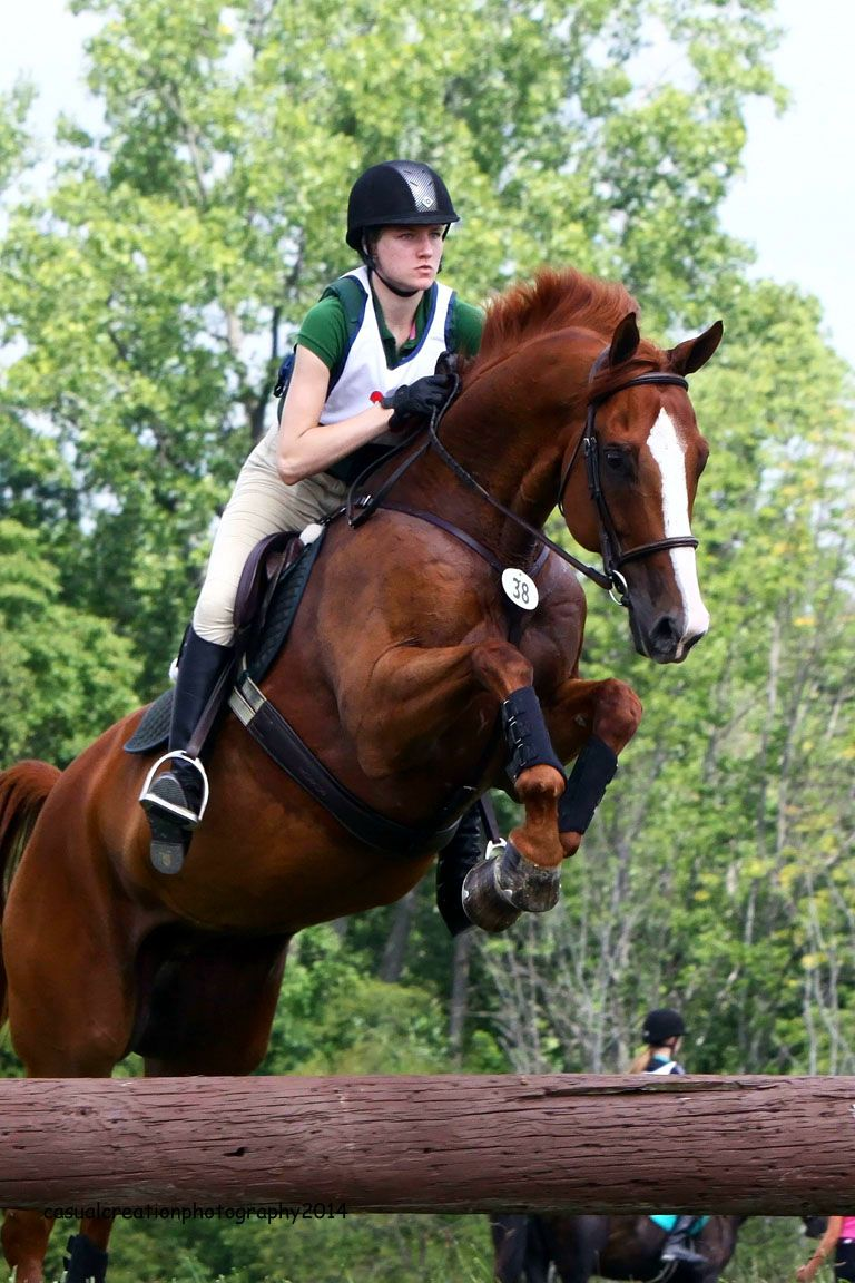 Click to see what JMR Judge Rob Gage had to say about this Hunter turned Eventing pair!