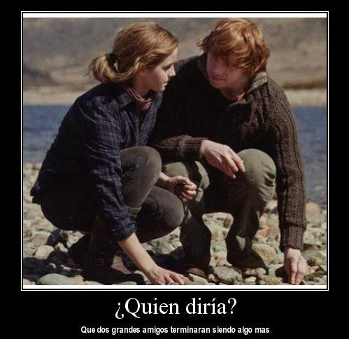 Frases Romanticas Harry Potter Charmed Y Harry Potter Y Animales