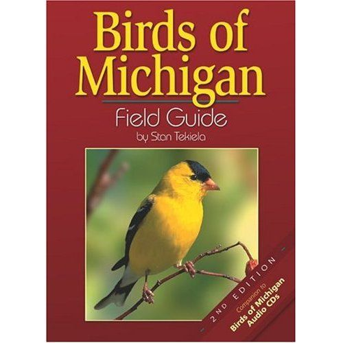 Wild birds unlimited most common winter birds in michigan birds wild birds unlimited most common winter birds in michigan publicscrutiny Gallery