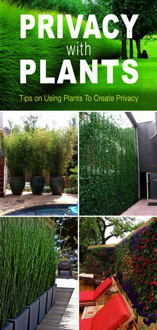 Landscape Gardening Companies Near Me other Landscaping ... on Backyard Landscaping Companies Near Me id=19472