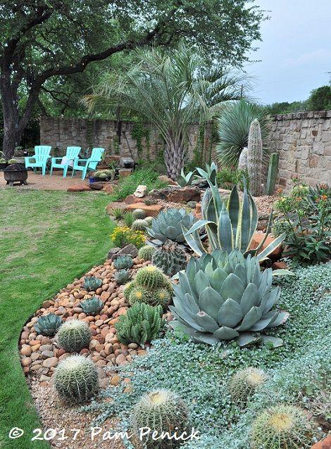 Matt Shreves S Garden Near Lake Travis Near Austin Tx A Succulent And Cactus Wonderland Succulent Landscape Design Rock Garden Landscaping Arizona Backyard