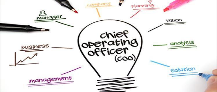Chief Operating Officer (COO) is an individual who is in charge of  planning, directing and | Chief financial officer, Cfo, Chief operating  officer