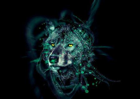Wolf - art, abstract, beautiful, digital