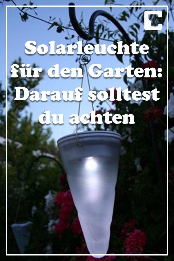 Solarleuchte kaufen Große und kleine Gartenlampen günstig