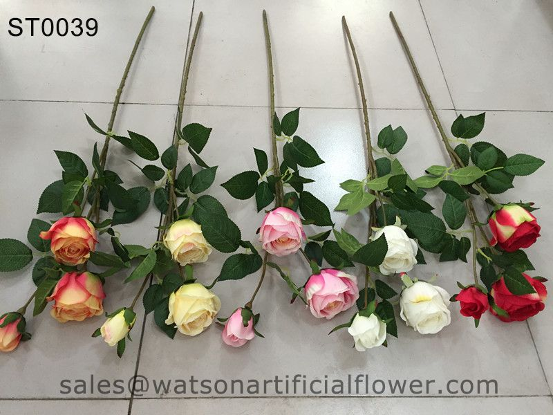 Rose flower wholesale - Tianjin Watson Gifts Co., Ltd.