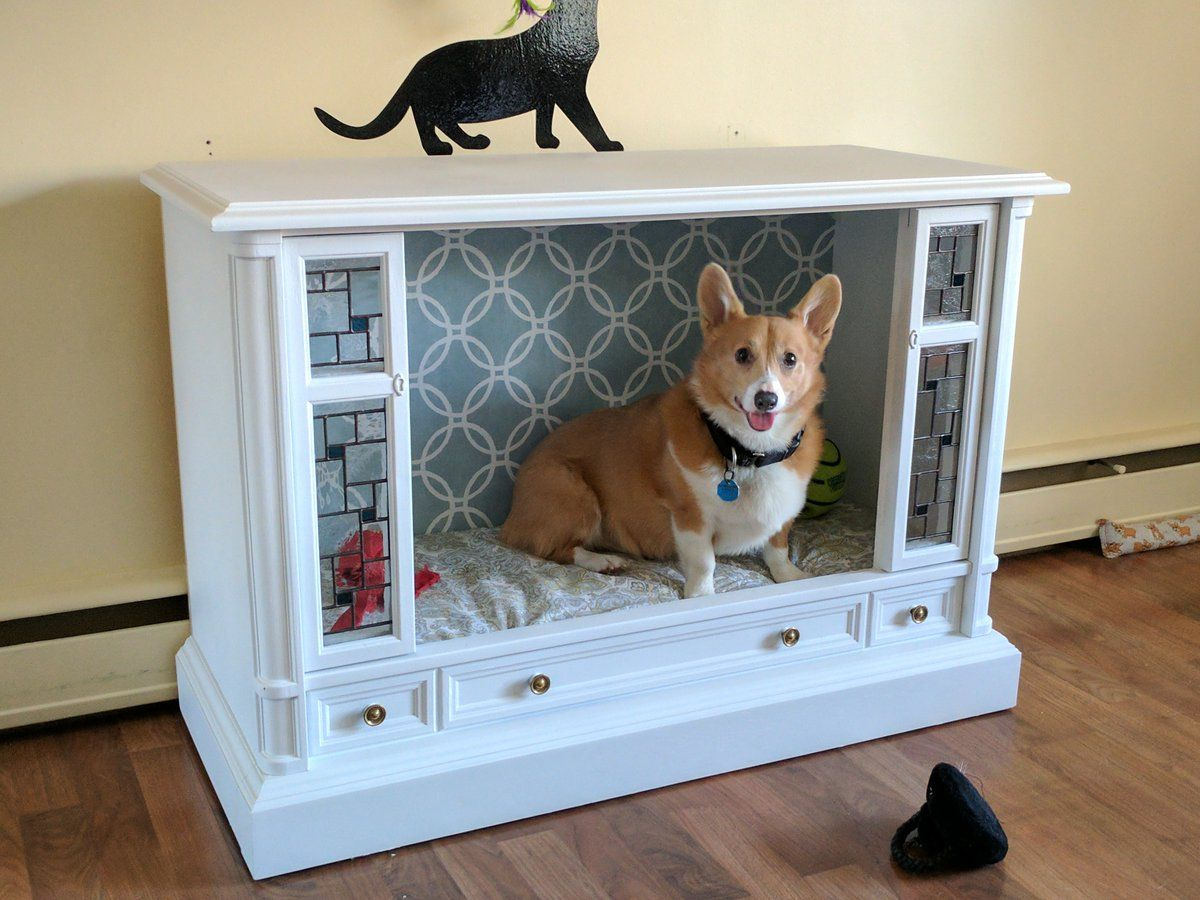 Genius pet owner turned oldschool TV into posh dog bed