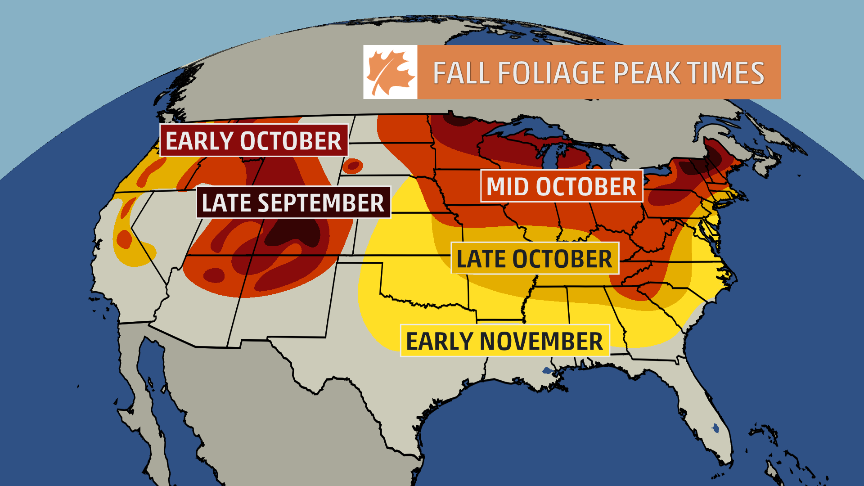 Grab that #PSL and hop in the car (after you watch #WUTV of course) and catch the beautiful #fall foliage!