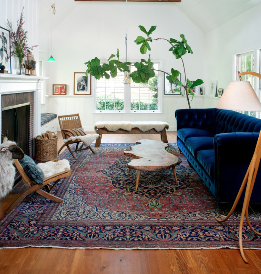 Like oriental rug, plant, and blue couch from Anthropologie.