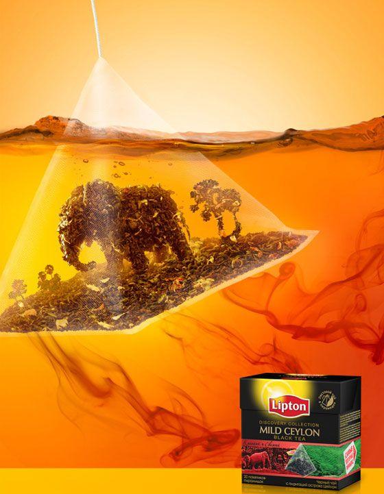 Creative Print Design for Lipton Tea
