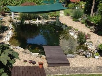 pin von bosch home garden auf garden in 2018 pinterest schwimmteich bauen schwimmteich. Black Bedroom Furniture Sets. Home Design Ideas
