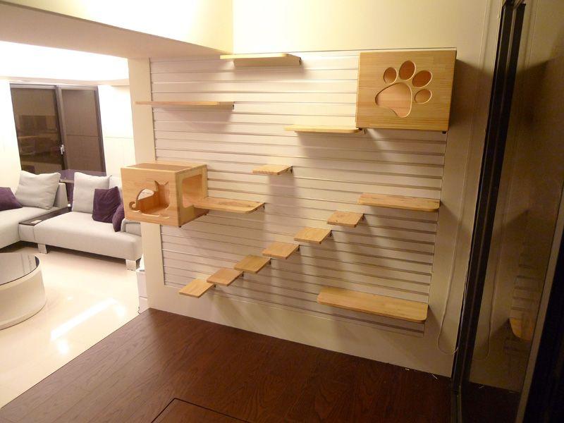 Elegant Cat Shelves
