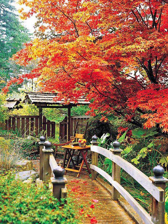 An Artist S Garden Haven Landscape Design Fall Landscaping Amazing Gardens