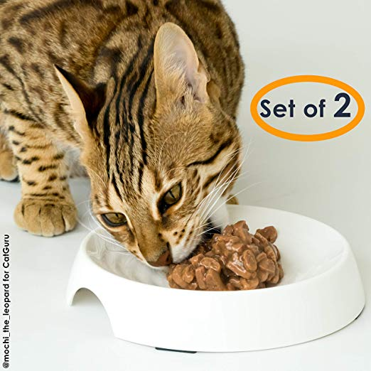 Amazon Com Catguru Cat Food Bowl Whisker Stress Free Cat Bowls