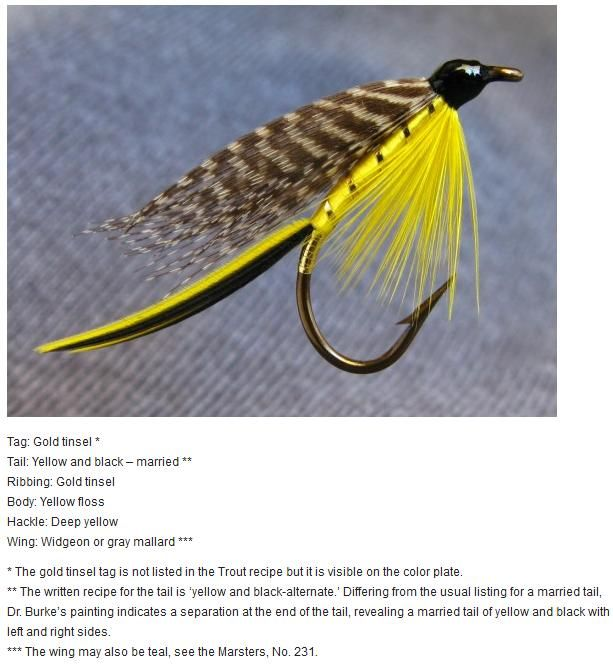 Martin | Vådfluer | Fly tying patterns, Fly tying materials, Fly Fishing