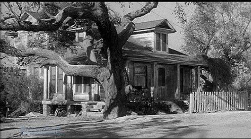 To Kill A Rocking Curl To Kill A Mockingbird Boo Radley Atticus Finch