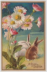 Vintage Easter Postcard Rabbits Under Flowers # Bunny Rabbit Smell the flowers but don't eat them okay?