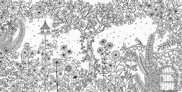 Desenho Para Colorir O Jardim Secreto Pesquisa Google Jardim