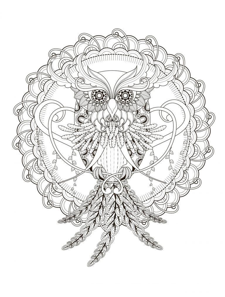 eule ausmalbilder mandala tiere  98 neu ausmalbild